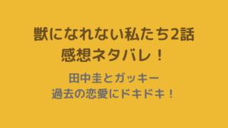 田中圭とガッキー過去の恋愛にドキドキ!