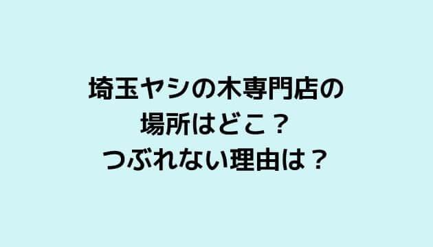 埼玉ヤシの木専門店の 場所はどこ? つぶれない理由は?