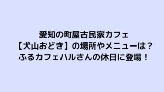 愛知の町屋古民家カフェ 【犬山おどき】の場所やメニューは? ふるカフェハルさんの休日に登場!