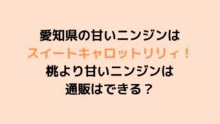 愛知県の甘いニンジンは スイートキャロットリリィ! 桃より甘いニンジンは 通販はできる? (1)